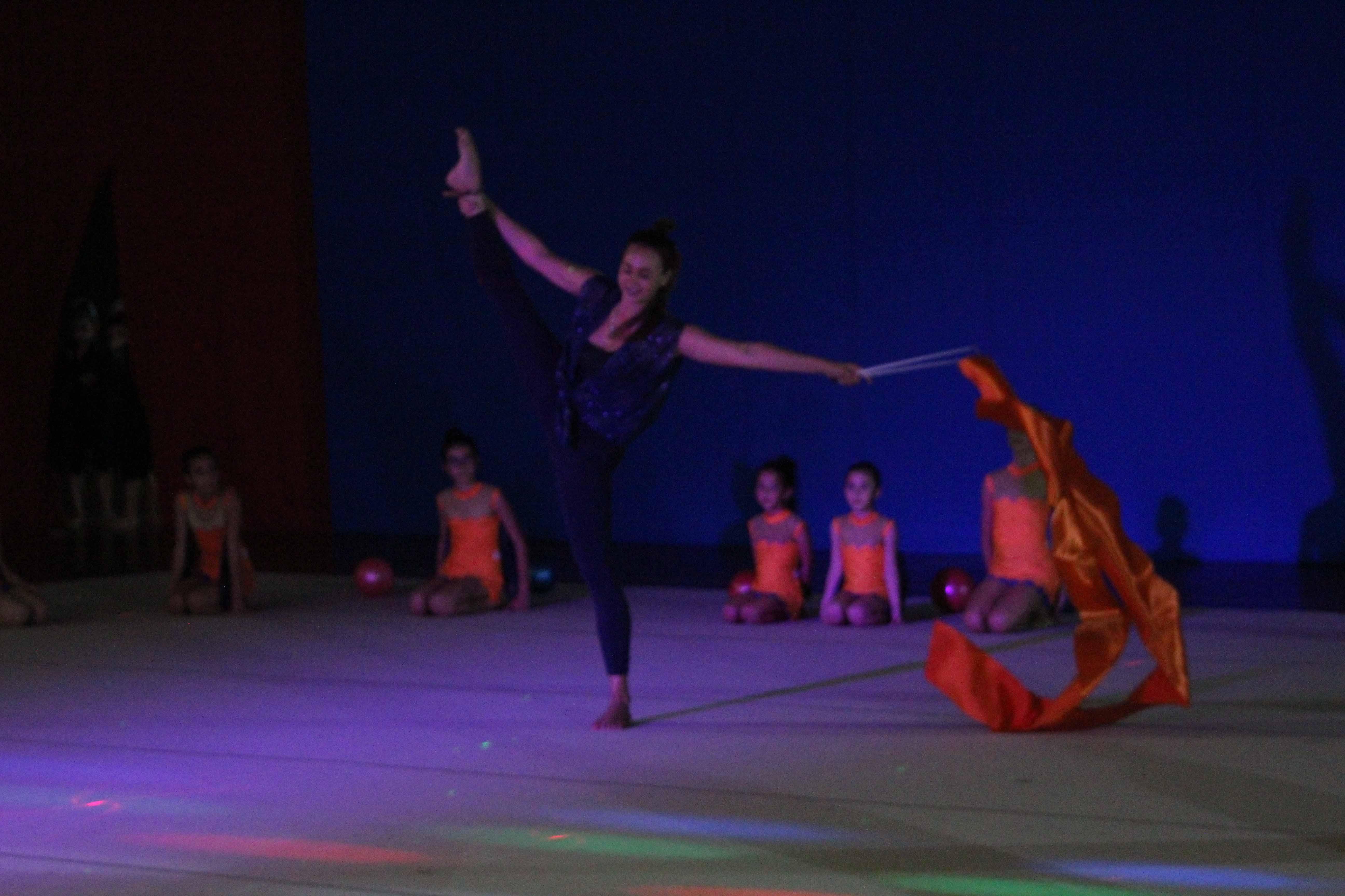 Galà della ginnastica ritmica 2017, Catania